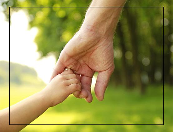 novi child custody help